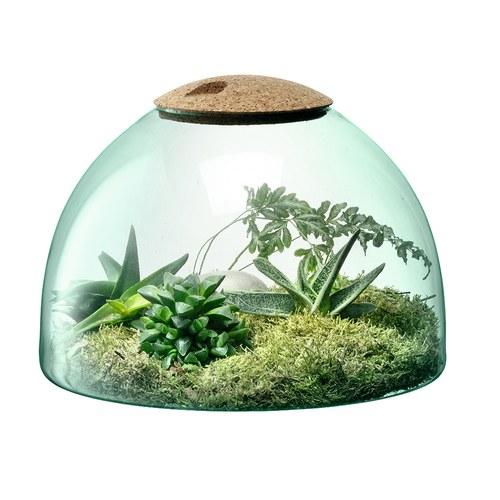 英國 LSA 伊甸園計畫 景觀花園溫室花器(高22公分)