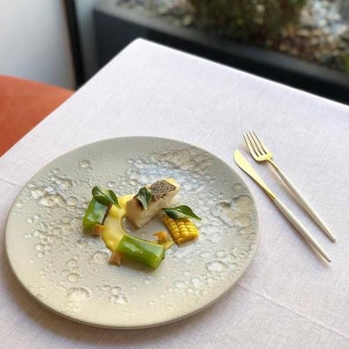 葡萄牙Cutipol 頂級GOA餐具組 (白x霧金)