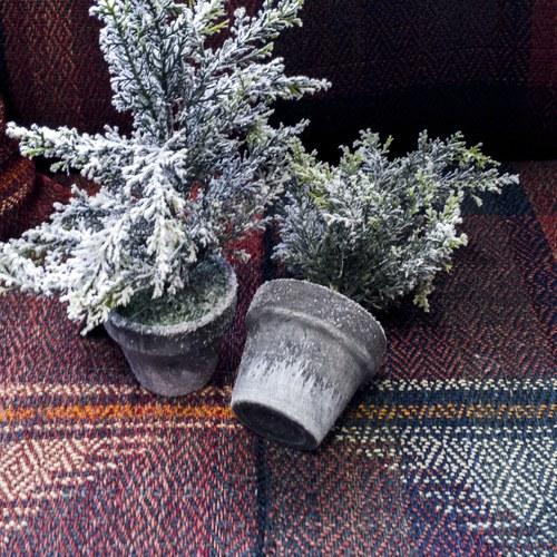 丹麥LeneBjerre 復古黑盆聖誕樹(高30公分)