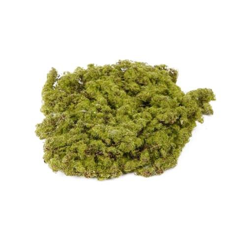 荷蘭Emerald人造植物 青苔蘚