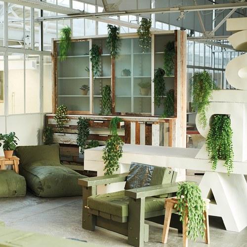 荷蘭Emerald人造植物 垂懸啤酒花灌木
