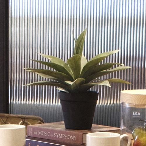 荷蘭Emerald人造植栽 小龍舌蘭灌木 (黑盆)