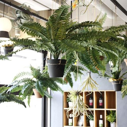荷蘭Emerald人造植栽 羊齒蕨 (黑盆、長42.5公分)