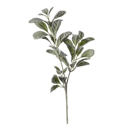 荷蘭 Emerald人造植物 銀葉菊