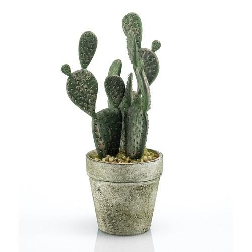 荷蘭Emerald人造植栽扁平仙人掌