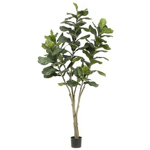 荷蘭Emerald人造植栽 琴葉榕(210公分)