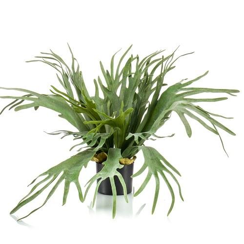 荷蘭Emerald人造植栽 鹿角蕨(膠盆、65公分)