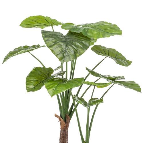荷蘭Emerald人造植栽  姑婆芋(膠盆、110公分)