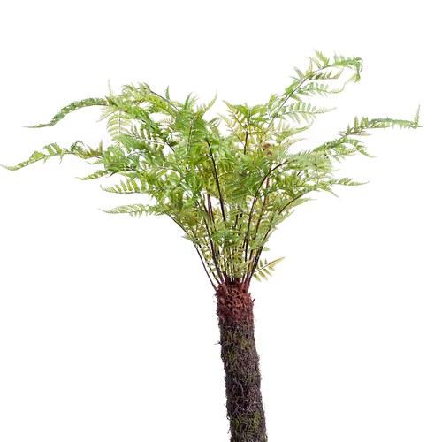 荷蘭Emerald人造植栽 羊齒蕨(175公分)