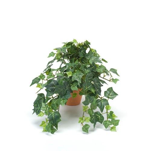 荷蘭Emerald人造植栽 草綠色長春藤 (紅盆)