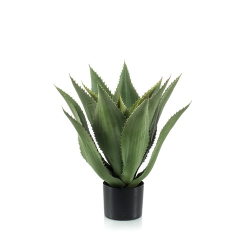 荷蘭Emerald人造植栽 小龍舌蘭灌木 (膠盆、15葉)