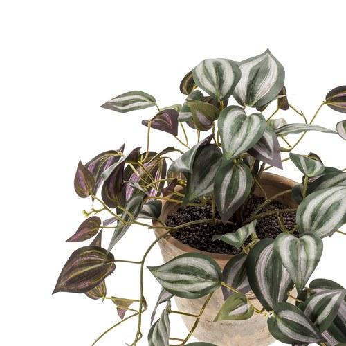荷蘭Emerald人造植物 吊竹梅 (仿舊泥盆)