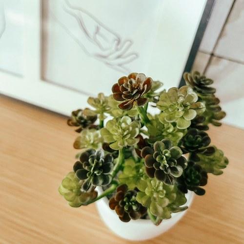 荷蘭Emerald人造植物 日本小松多肉植物 (白盆、20公分)