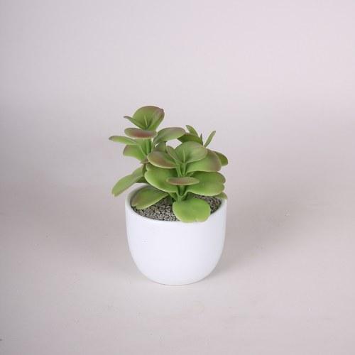 荷蘭Emerald人造植物 多肉圓刀盆栽 (白盆、20公分)