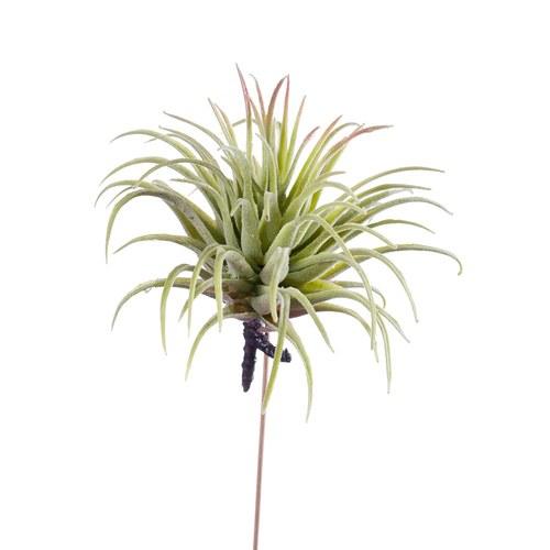荷蘭Emerald人造植物 空氣鳳梨 (長12公分)
