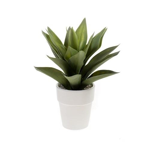 荷蘭Emerald人造植栽 小龍舌蘭灌木 (白盆)