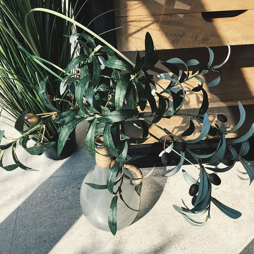 荷蘭Emerald人造植物 橄欖枝葉 (長100公分)