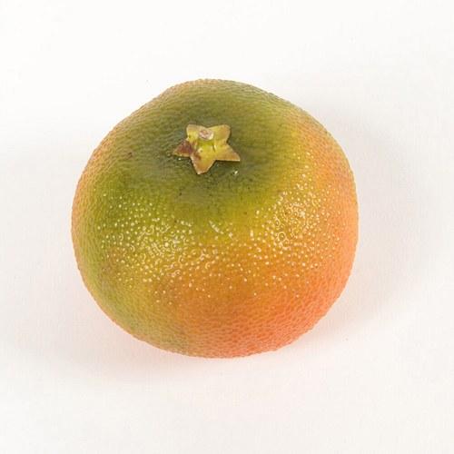 荷蘭Emerald人造植物 柑橘果實