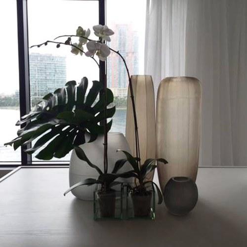 德國Guaxs玻璃花器 GOBI系列 (淺褐、高65公分)