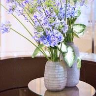 德國Guaxs玻璃花器BELLY系列(褐、高24公分)