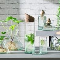 英國 LSA 伊甸園計畫 簡約切口軟木塞水壺