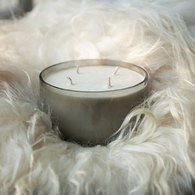 英國TrueGrace香氛蠟燭 N°36 甜美柑橘 (625克)