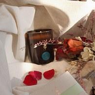 英國True Grace 伯靈頓實驗室 雪松與玫瑰經典蠟燭(N°92)
