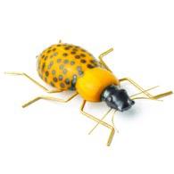 葡萄牙Mambo藝術擺飾 甲蟲 (黃)