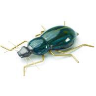 葡萄牙Mambo藝術擺飾 甲蟲 (綠)
