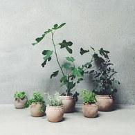 丹麥tineKhome 赤土甕型花器組 (2入)