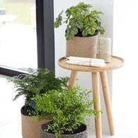 波蘭Sits 三腳支撐橡木圓形邊桌 (直徑40公分)