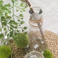 荷蘭Emerald人造植物 石竹