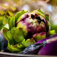 荷蘭Emerald人造植物 朝鮮薊