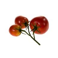 荷蘭Emerald人造植物 鮮紅色番茄果實