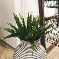 荷蘭Emerald人造植物 羊齒蕨灌木