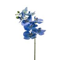 荷蘭Emerald人造花藝 藍色蝴蝶蘭