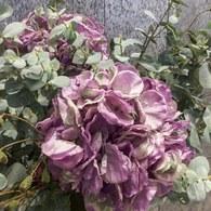 荷蘭Emerald人造花藝 紫色繡球花 (長85公分)
