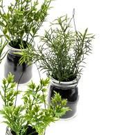 荷蘭 Emerald人造植栽 迷迭香