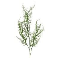 荷蘭 Emerald人造植物 蘆筍葉