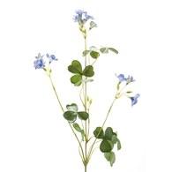 荷蘭 Emerald人造植物 酢漿草