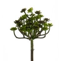 荷蘭 Emerald人造植物 石蓮花