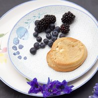荷蘭FloraCastle 水藍色桔梗花圖紋餐盤 (直徑21.5公分)