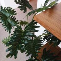 荷蘭Emerald人造植栽 蔓綠絨綠葉叢 (高95公分)