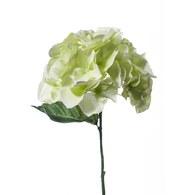 荷蘭Emerald人造花藝 嫩草色繡球花 (長28公分)