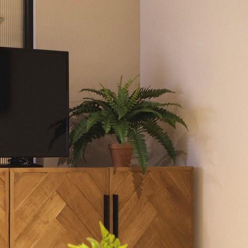 荷蘭Emerald人造植栽 草綠色羊齒蕨 (紅盆、32葉)