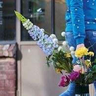 荷蘭Emerald人造花藝 靛藍色羽扇豆魯冰花