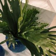 荷蘭Emerald人造植物 鹿角蕨 (長41公分)