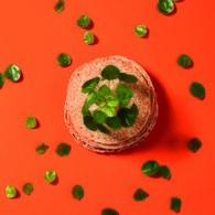 荷蘭 Emerald人造植物 鏡面草