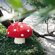 荷蘭ACP 點點蘑菇椅凳